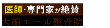 「大船エール整骨院」オーダーメイド整体で根本改善 ロゴ